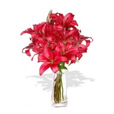 4 Pink Asiatic Lily Vase Bouquet
